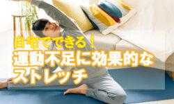 自宅でできる運動不足に効果的なストレッチ